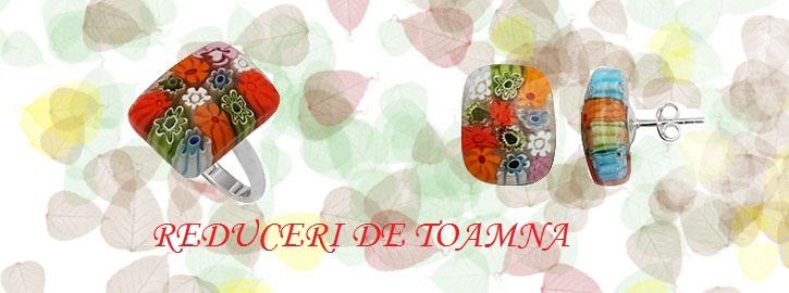banner_reduceri_toamna